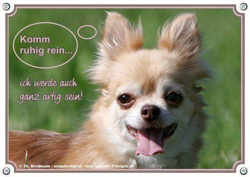 Hunde-Warnschilder – mal ganz sympathisch …
