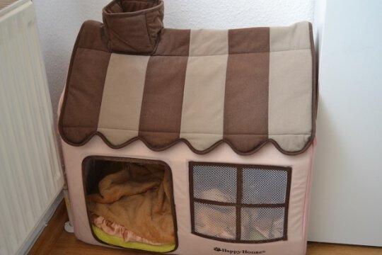 nele ist auch oft tagsüber in ihrem Schlafhaus zu finden.