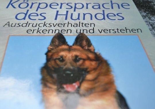 Die Körpersprache ist ein elementarer Bestandteil der Hundepsychologie.