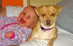 Kinder und Hunde können gute Freunde sein...
