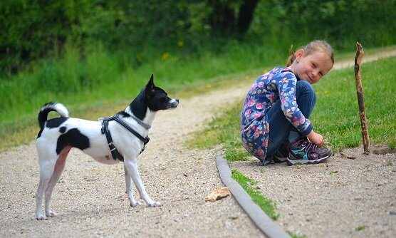 Kinder und Hunde - eigentlich eine tolle Verbindung.