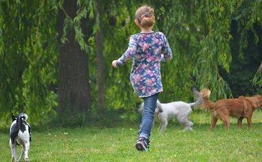Kinder müssen den Umgang mit Tieren erst lernen.