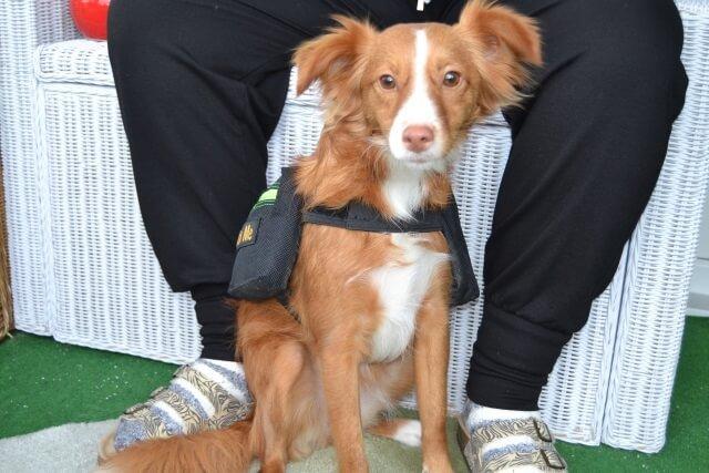 Sasha und ihre Packtasche