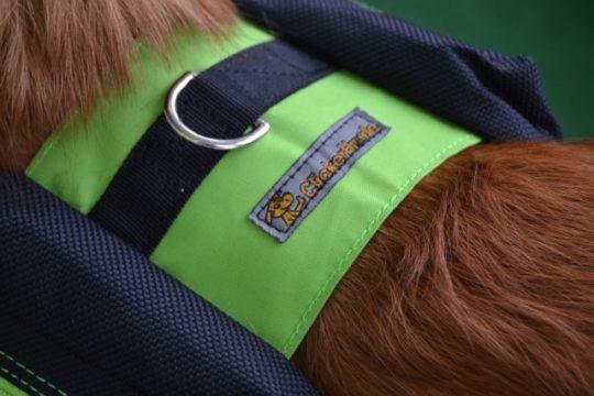 Packtasche Hund