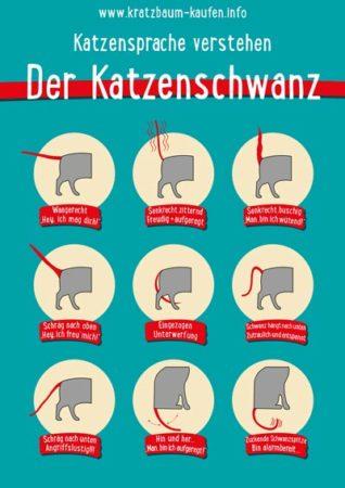 Quelle: www.kratzbaum-kaufen.info